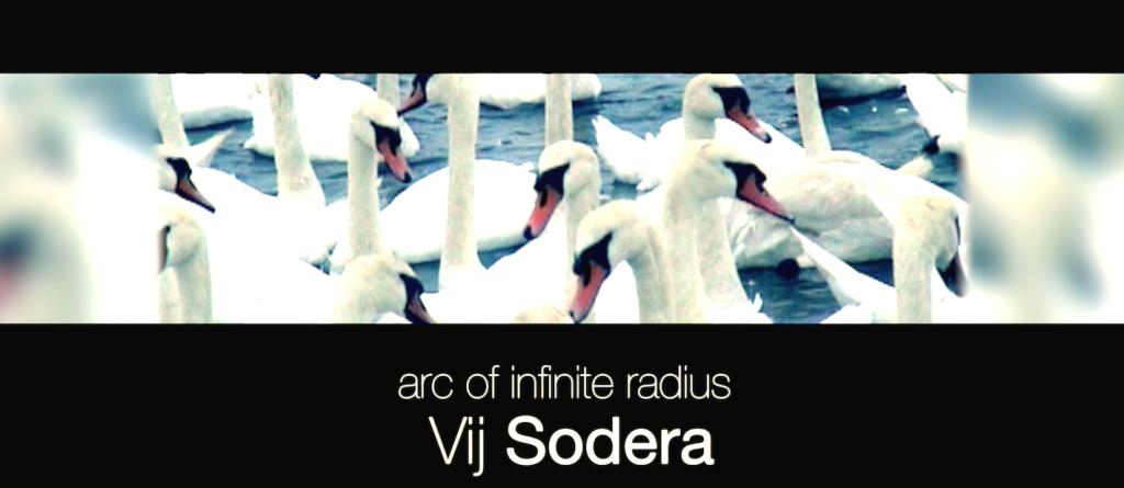 ARC swans